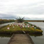 LaureTixier_Floraison du Potager sur l'île du Marais Perdu, Oléron. Semis à la volée des 120 maisons de béton teinté dans la masse.