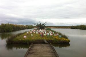 """Nouvelle floraison de """"Potager"""" sur l'île du Marais Perdu, Oléron. 120 modules en béton ductal teinté dans la masse   6 couleurs  [120] 37 x 30 x 22 cm"""
